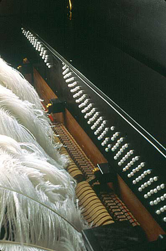 Detail: Bessie Smith meets Beethoven . 2004 . piano