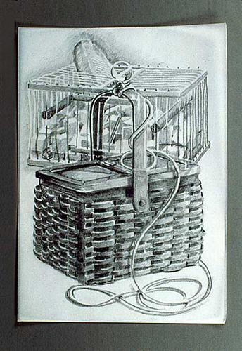 Basket & Cage . 2000